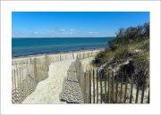 5×7 Photo Card: Lambert's Cove Fence 1