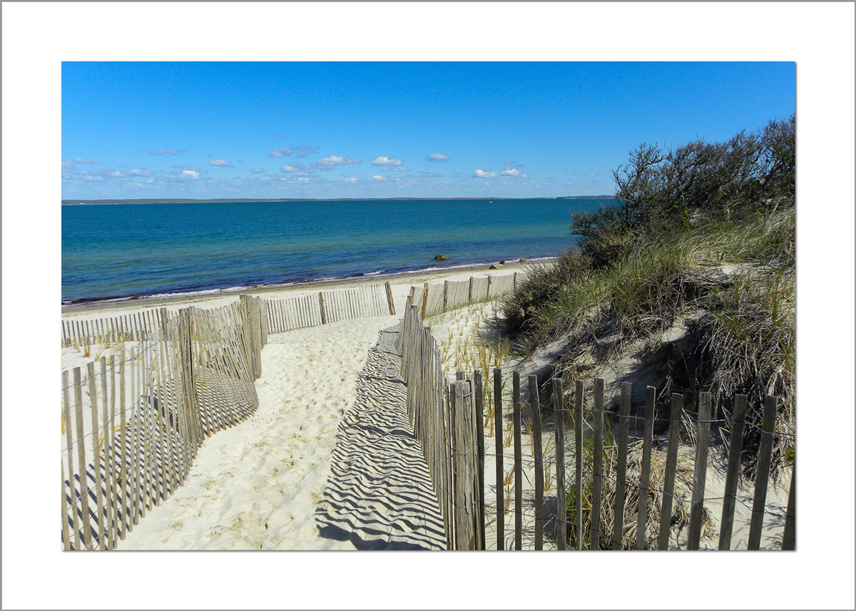 5x7 Photo Card: Lambert's Cove Fence
