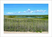5×7 Photo Card: Long Point View from Fence 1
