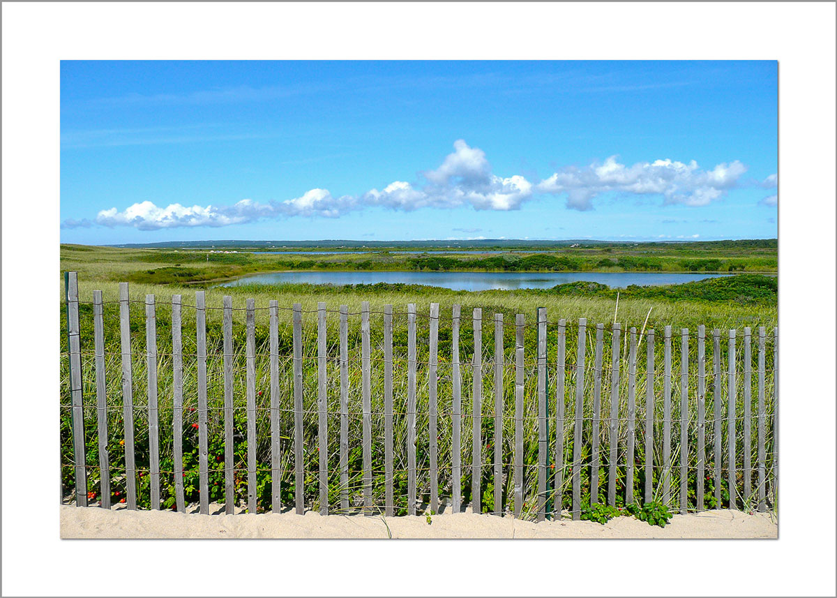 5x7 Photo Card: Long Point View from Fence