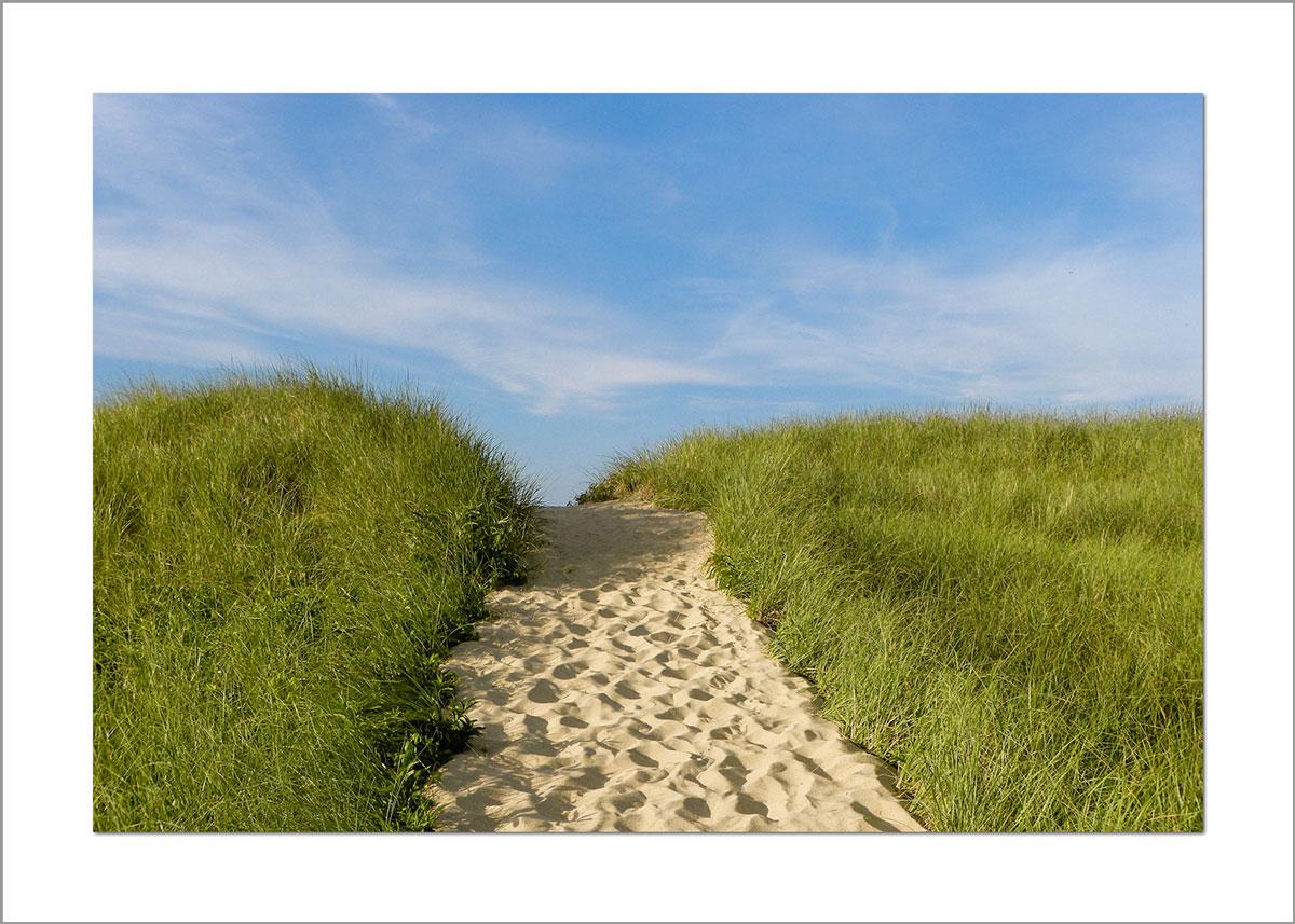 5x7 Photo Card: South Beach Sandy Path
