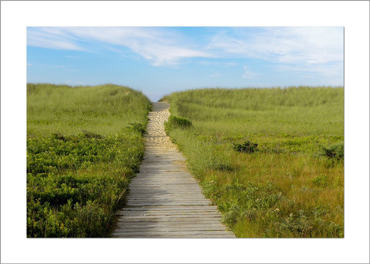 5x7 Photo Card: South Beach Wooden Path