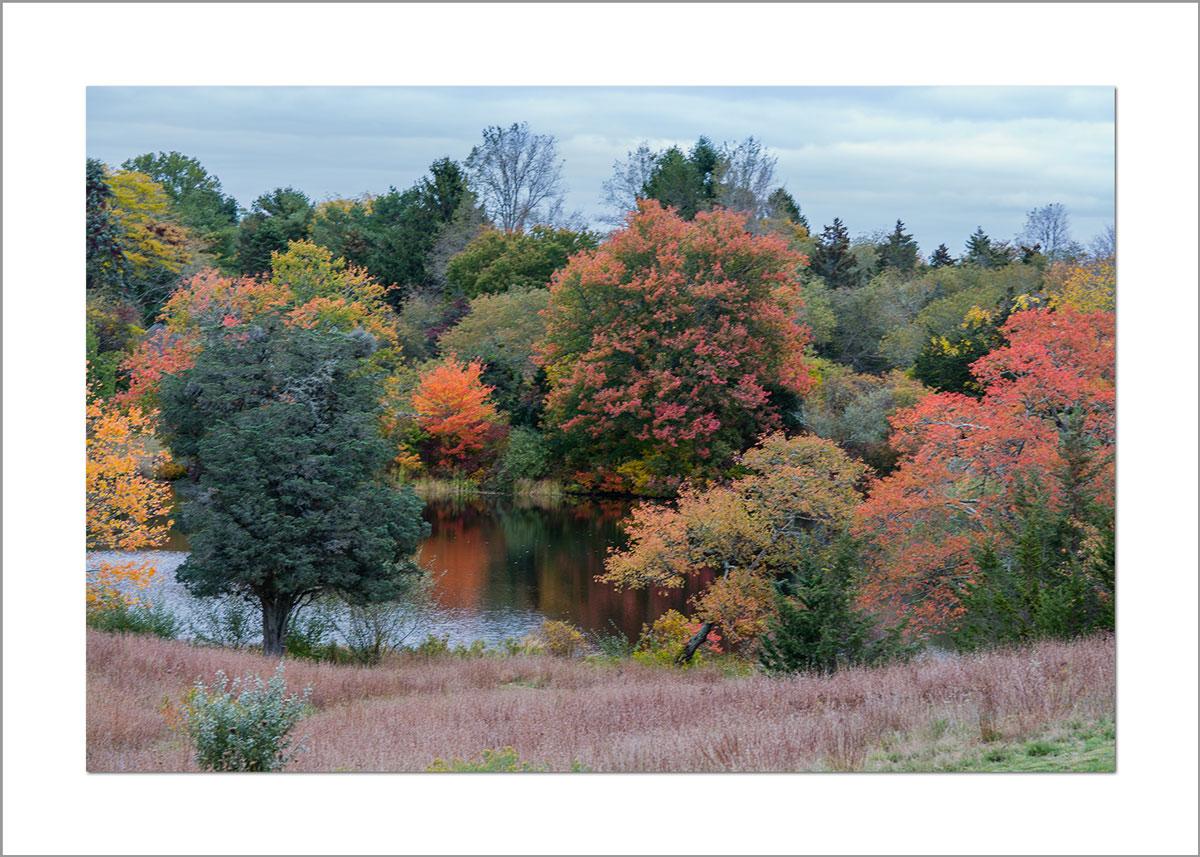 5x7 Photo Card: Look Pond