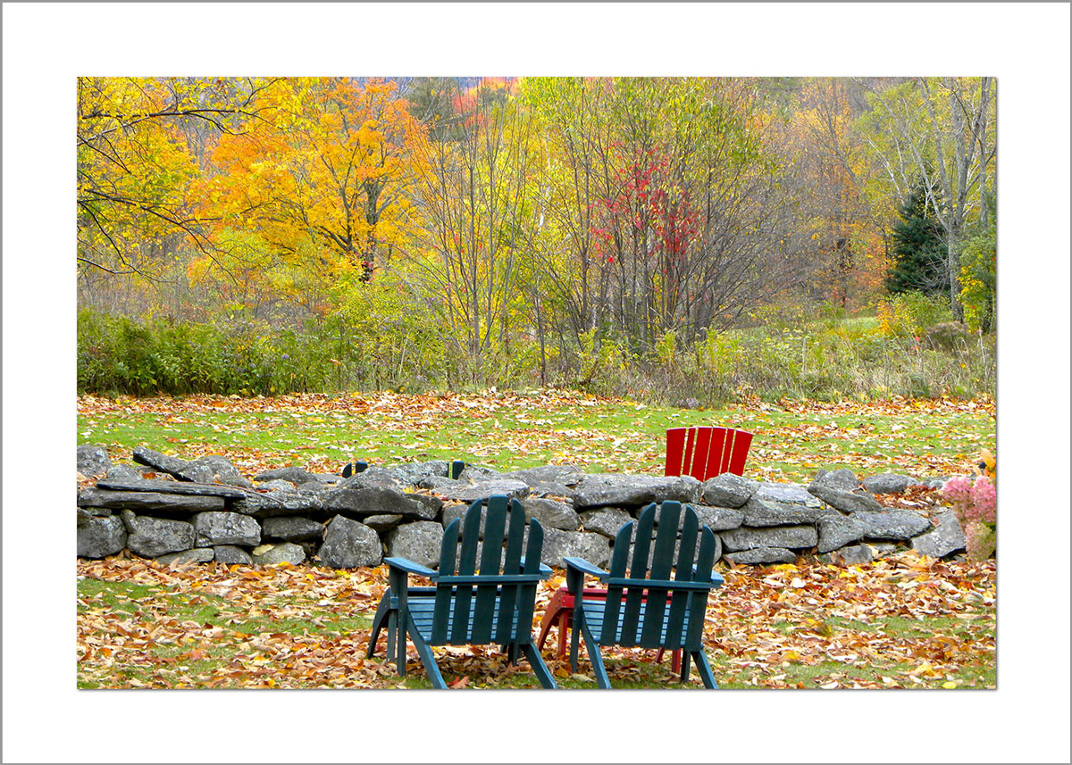 5x7 Photo Card: Sitting with the Foliage