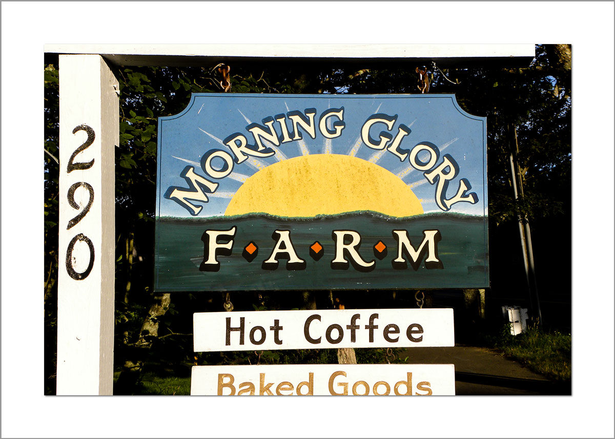 5x7 Photo Card: Morning Glory Farm Sign
