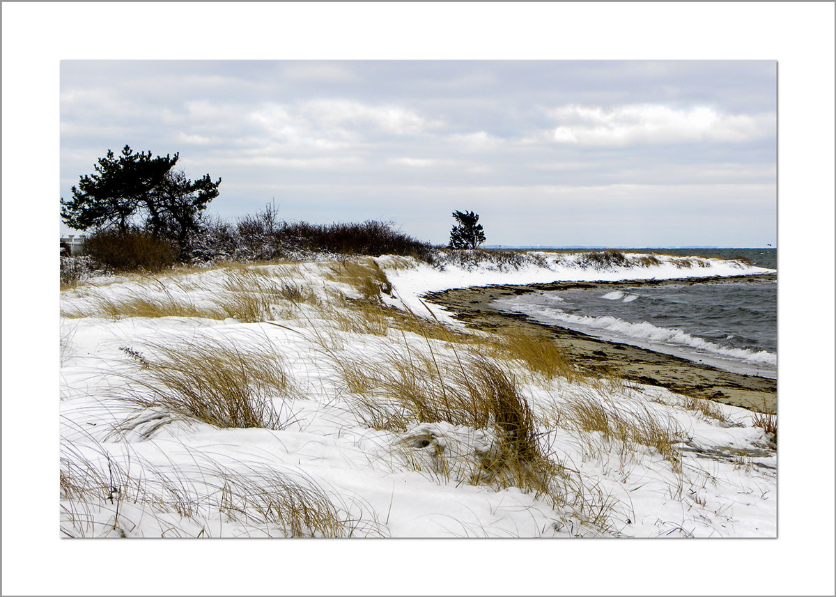 5x7 Photo Card: Fuller Street Beach in Snow