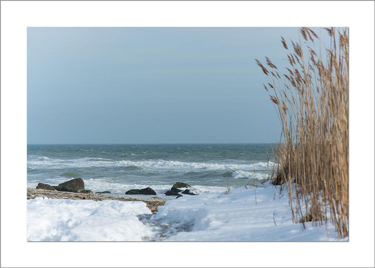 5x7 Photo Card: Lucy Vincent Beach Snow