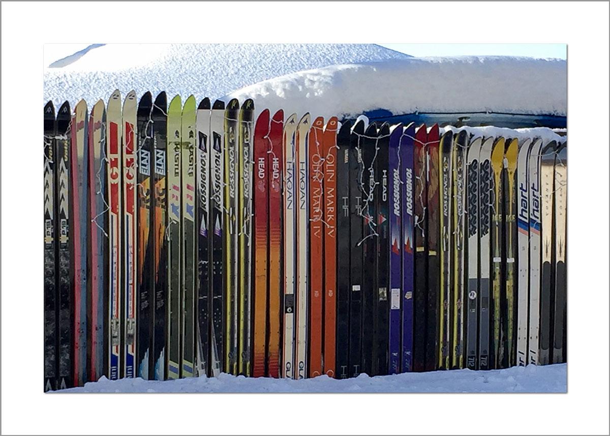 5x7 Photo Card: Skiing Down Barnes Road