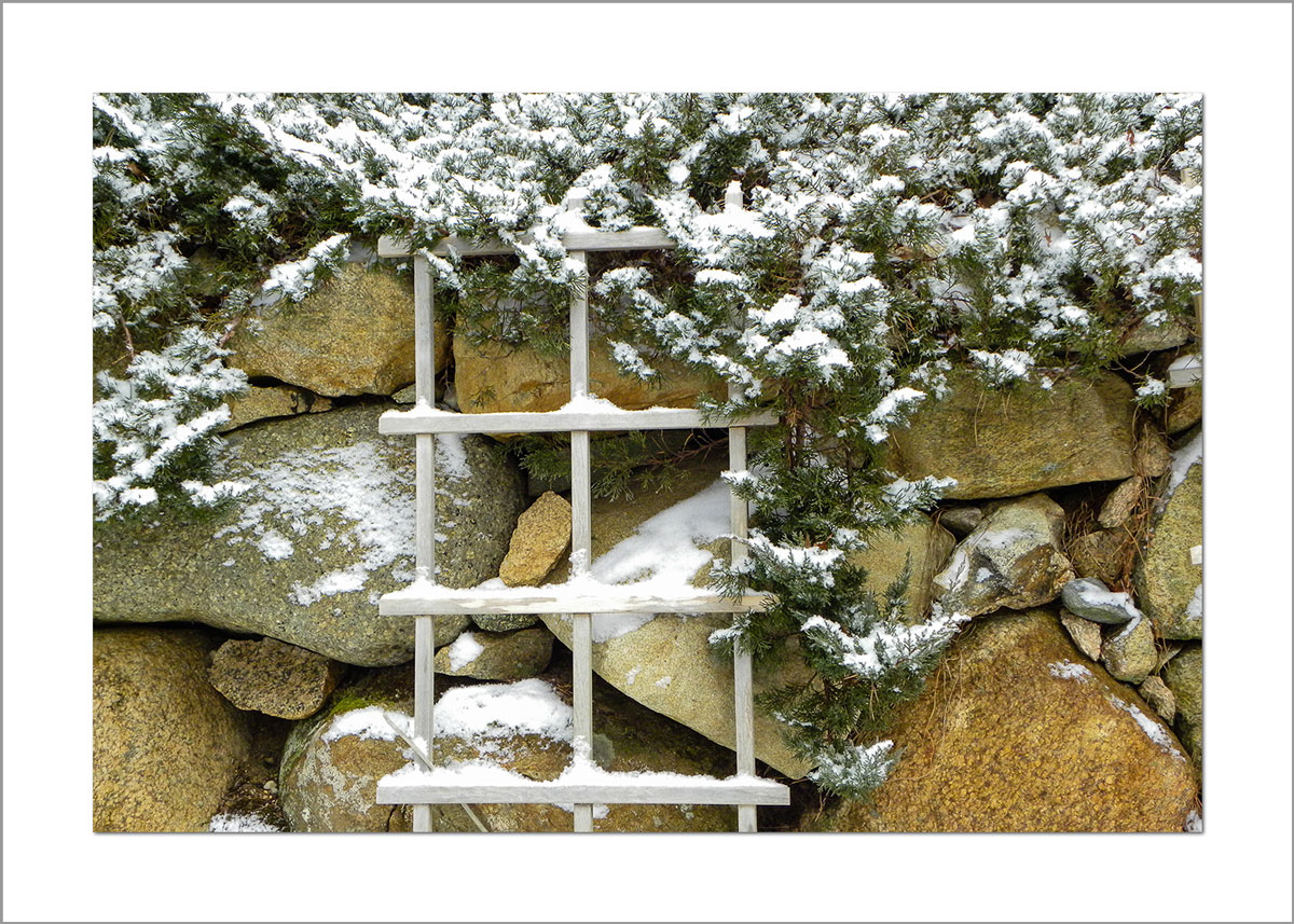 5x7 Photo Card: Snowy Stone Wall