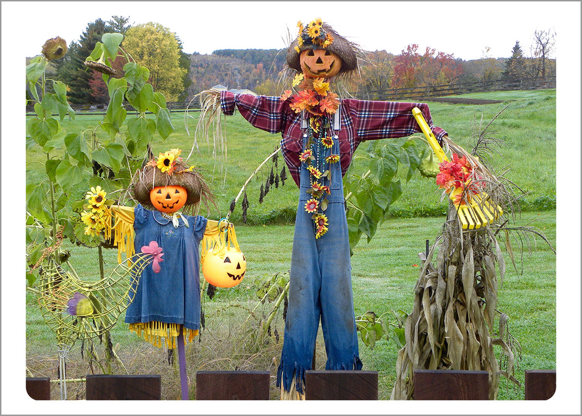 Boxed Gift Enclosures: Father and Daughter Scarecrow (Box of 5)