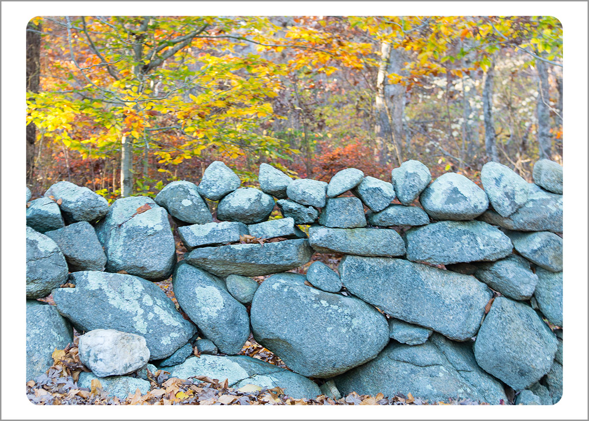 Boxed Gift Enclosures: Stone Wall in Fall (Box of 5)