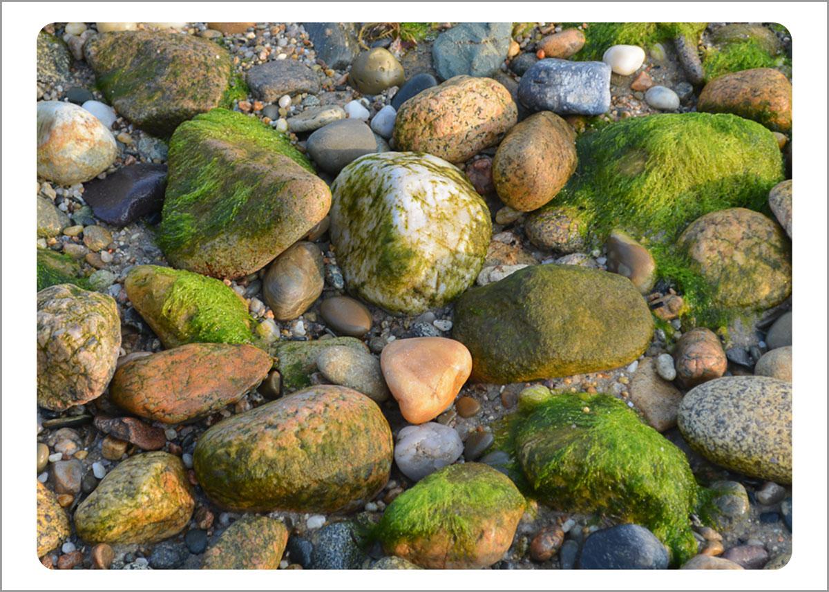 Boxed Gift Enclosures: Mossy Rocks (Box of 5)