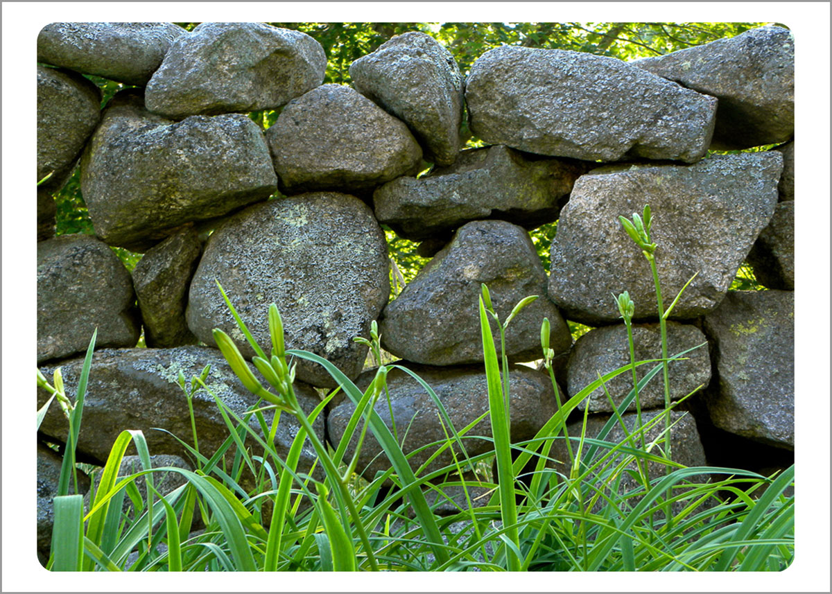 Boxed Gift Enclosures: Stone Wall - Polly Hill (Box of 5)