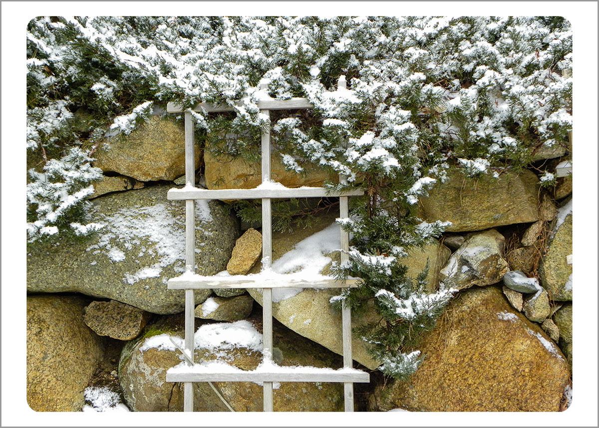 Boxed Gift Enclosures: Snowy Stone Wall (Box of 5)