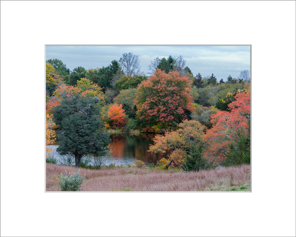 Matted 5x7 Photo: Look Pond