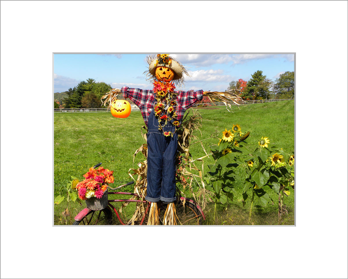 Matted 5x7 Photo: Scarecrow