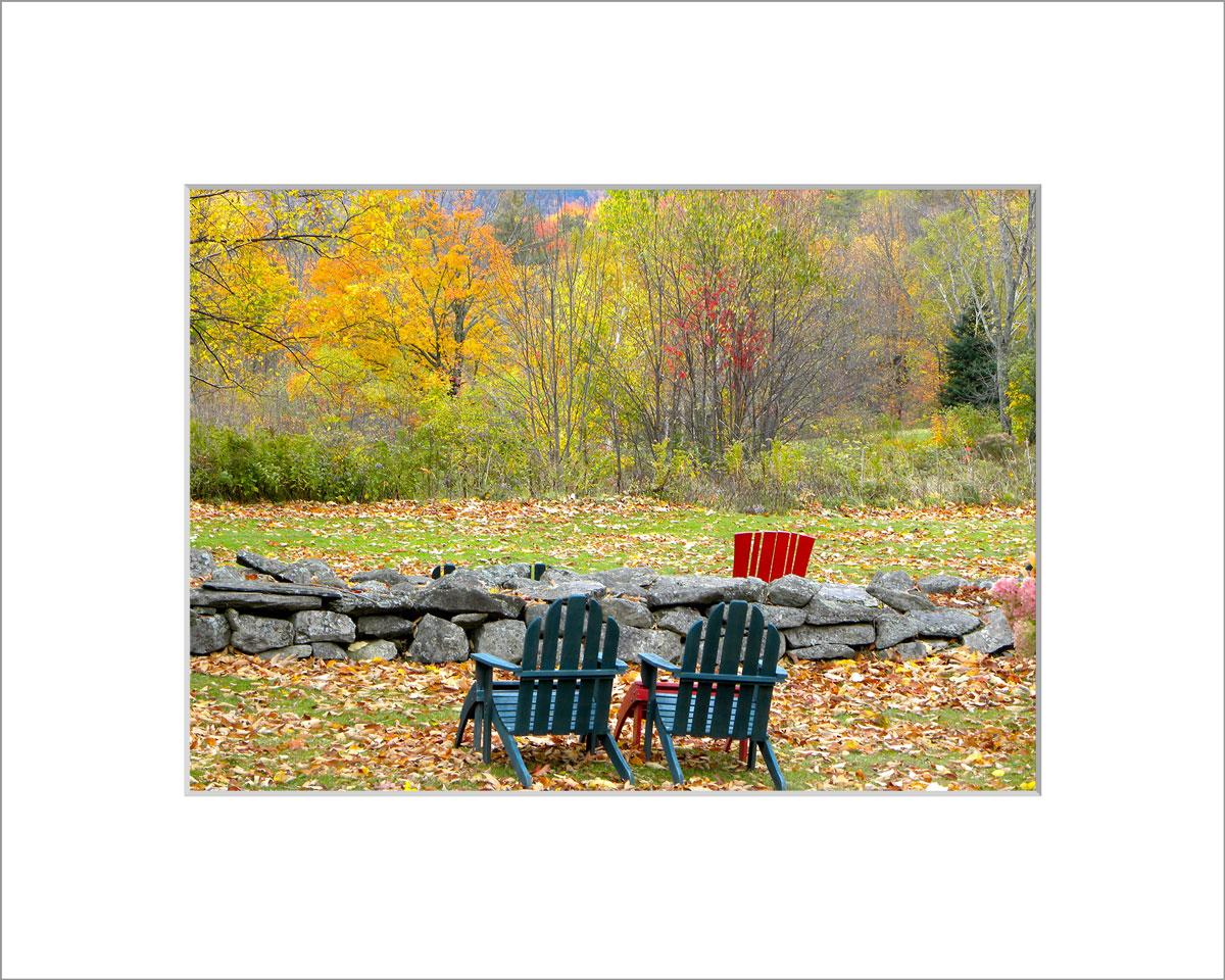 Matted 5x7 Photo: Sitting with the Foliage
