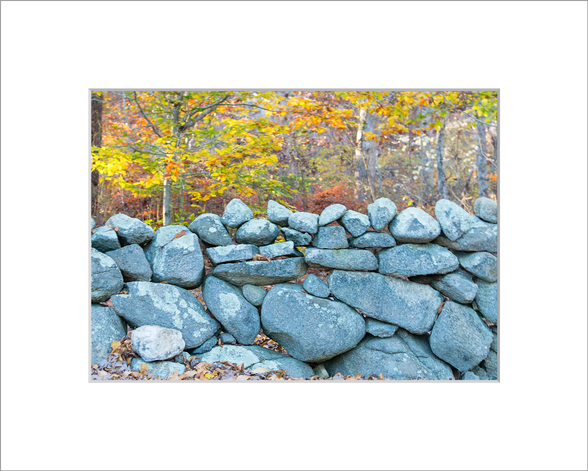 Matted 5x7 Photo: Stone Wall in Fall