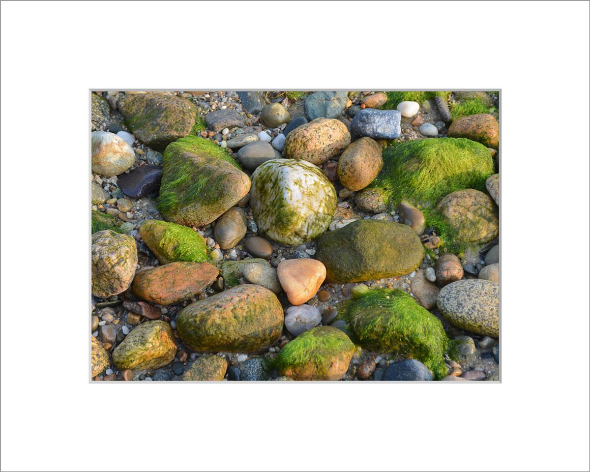 Matted 5x7 Photo: Mossy Rocks