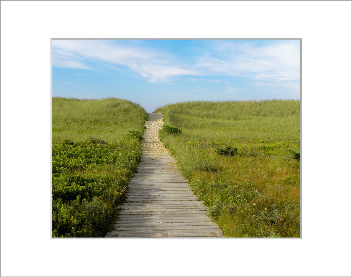 Matted 8x10 Photo: South Beach Wooden Path
