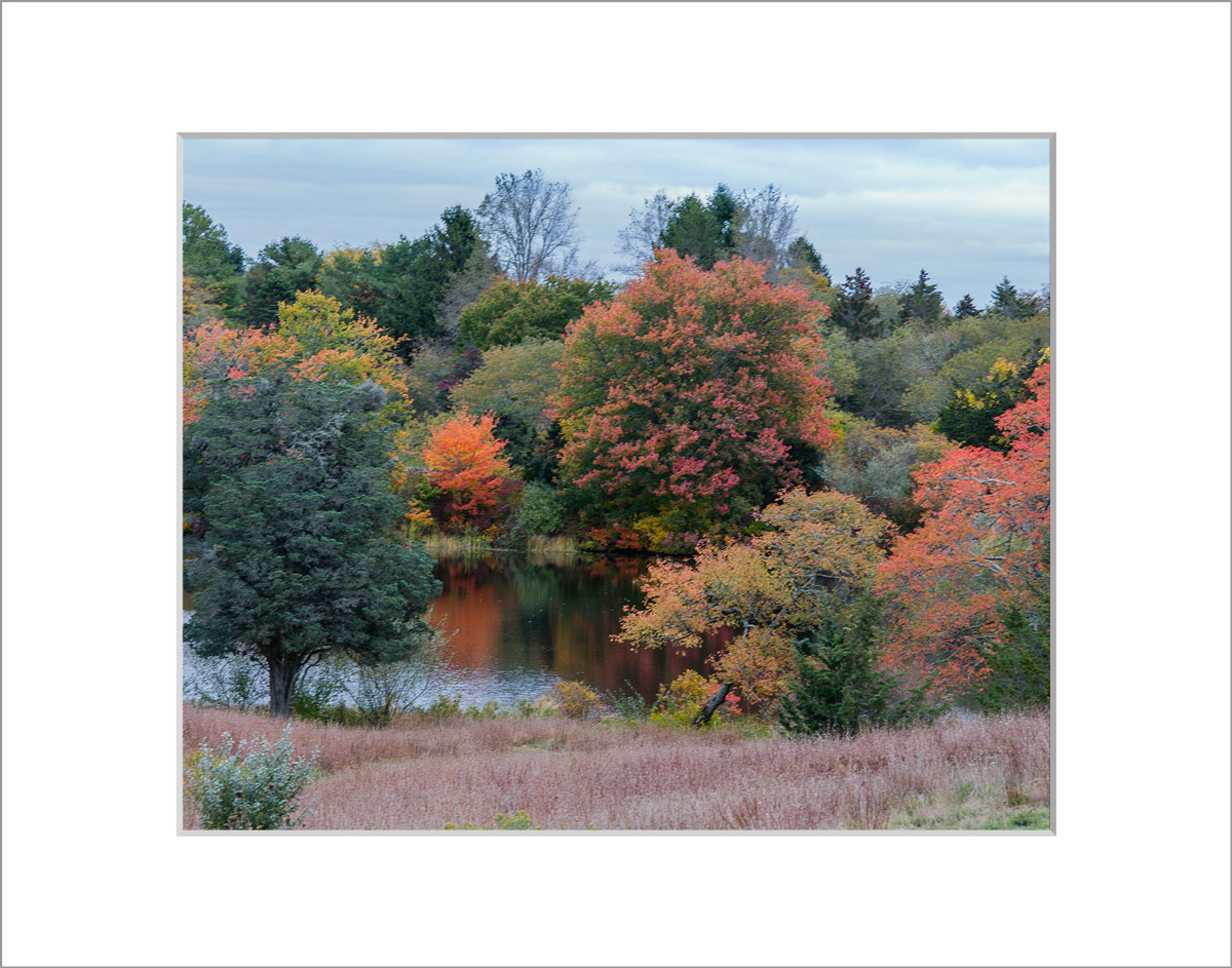 Matted 8x10 Photo: Look Pond
