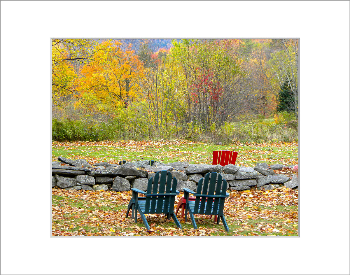 Matted 8x10 Photo: Sitting with the Foliage