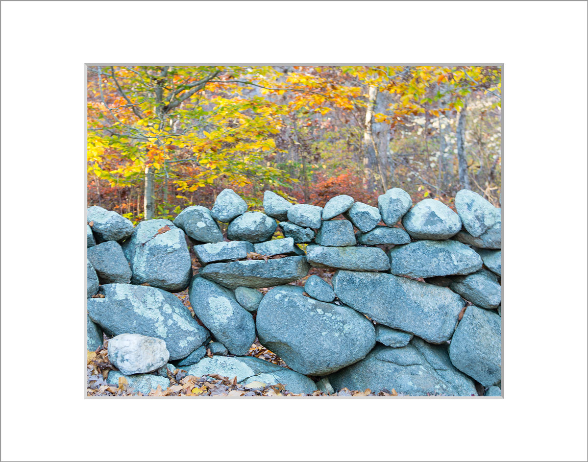Matted 8x10 Photo: Stone Wall in Fall