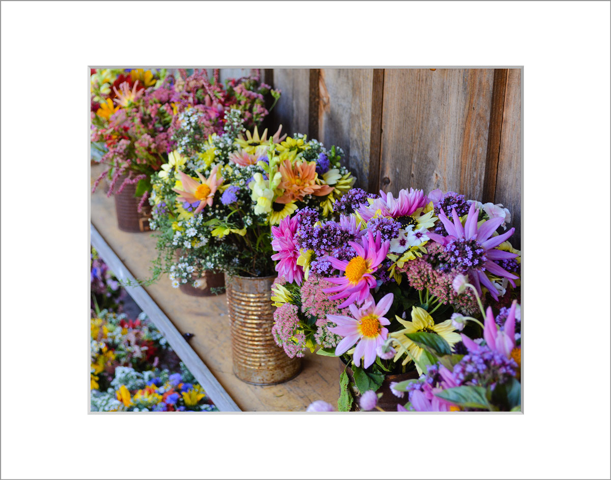 Matted 8x10 Photo: Bouquets Pnk Cans