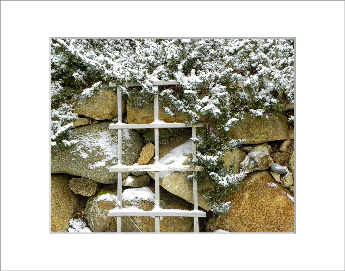 Matted 8x10 Photo: Snowy Stone Wall